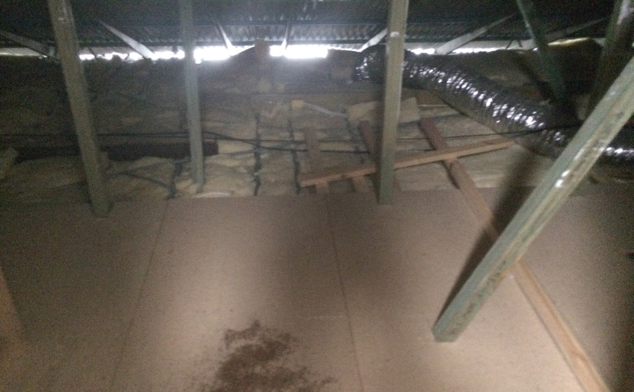 Clean Attic Space in Bedford