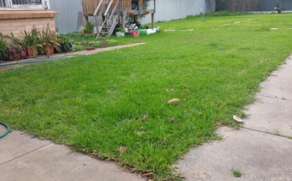 Big Back Yard in Frewville SA