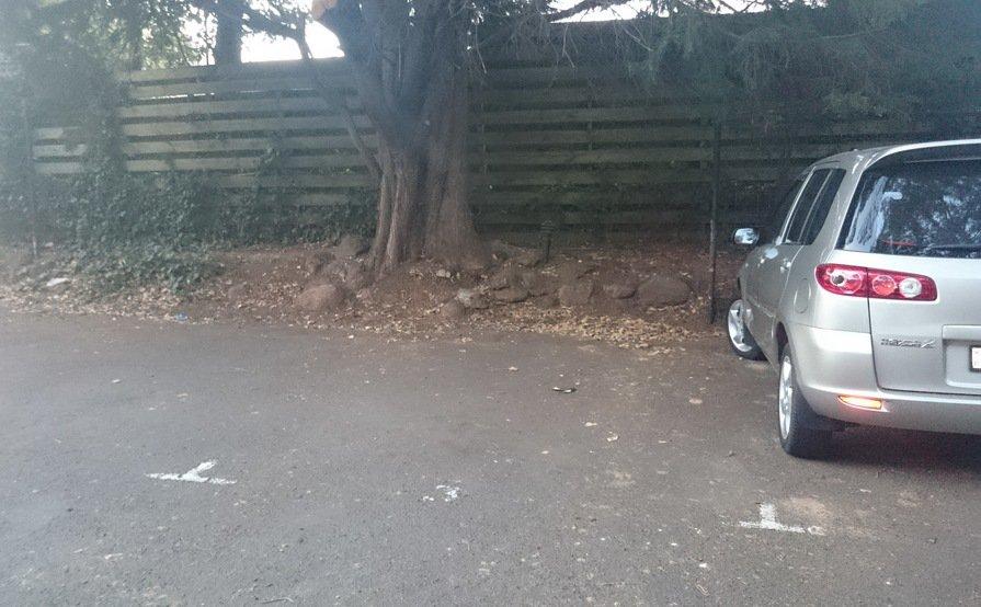 Carpark in Punt Road