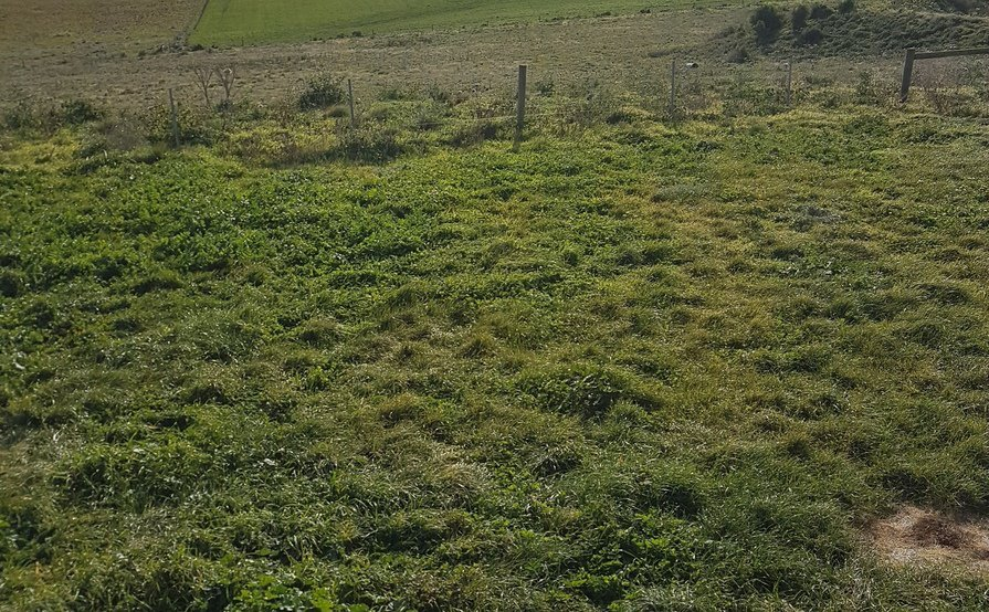 Bulla - Secured Gated Farm Land suitable for Machinery