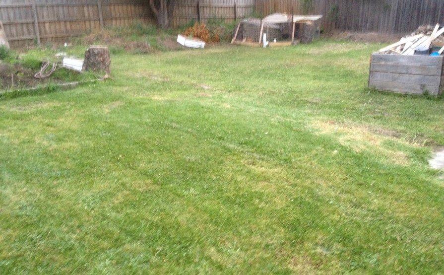 Huge rear garden, veggie patch, fruit trees, with outdoor toilet