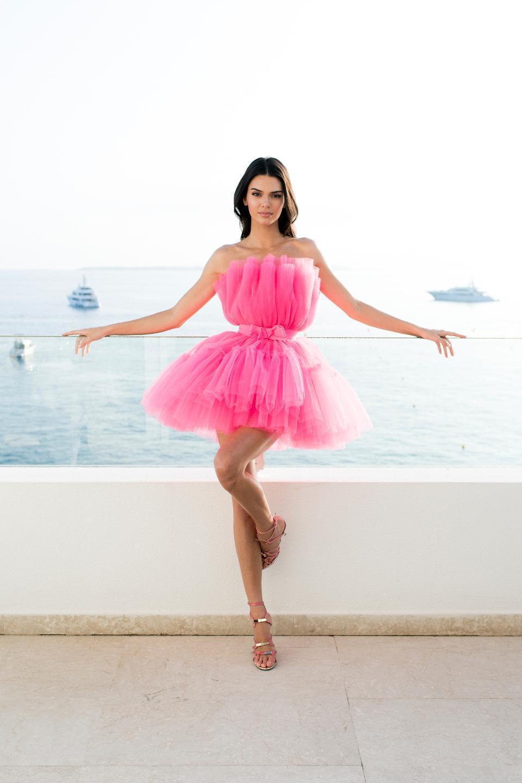 Giambattista Valli Flared Tulle Dress Size 8 The Volte