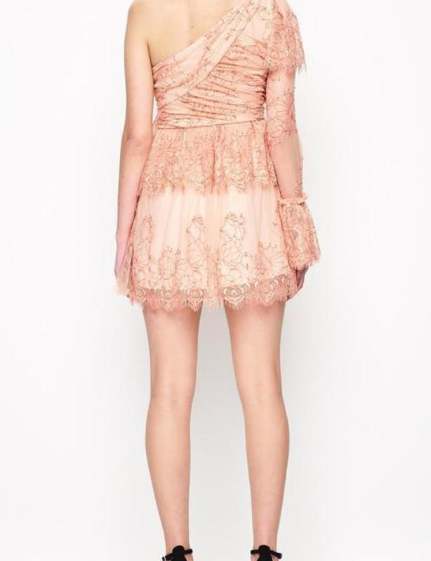Alice McCall Isn't She Lovely Pink and Nude Dress